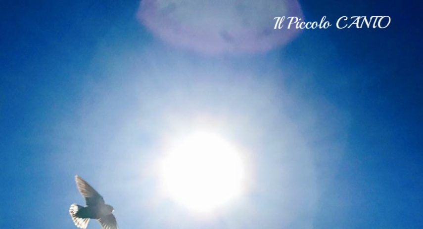 sole-cielo-volare